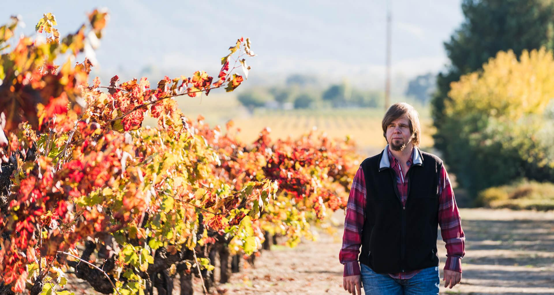 Dave Ready Jr., Murphy-Goode Winemaker walking throughout vineyards